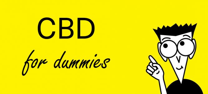 CBD oil for dummies